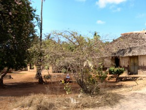 Village on the Road to Shimba Hills